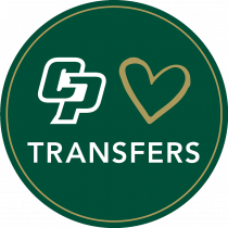 CP Loves Transfers